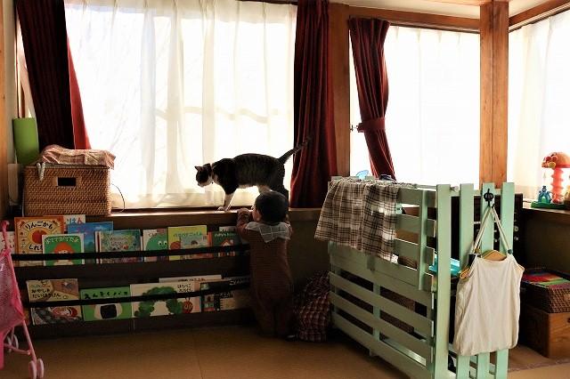青野さんの愛猫くーちゃんに興味津々な息子